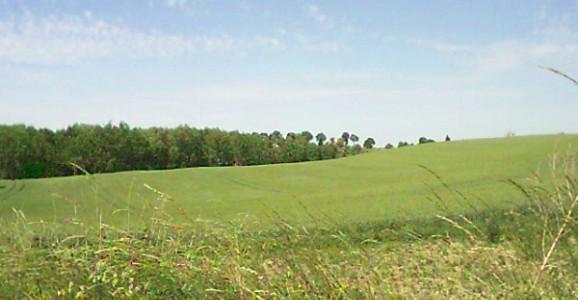 Zasady i metody oceny ziemi rolnej